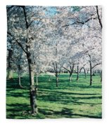 Washington Dc Cherry Blossoms Fleece Blanket