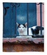 Watchful Cat, Mexico Fleece Blanket