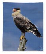 Watchful Eyes Crested Southern Caracara Fleece Blanket