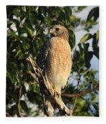 Watchful Eyes - Red Shouldered Hawk Fleece Blanket
