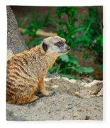 Watchful Meerkat Fleece Blanket