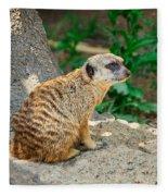 Watchful Meerkat Vertical Fleece Blanket