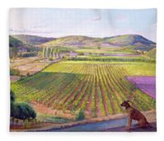 Watching From The Walls Old Provence Fleece Blanket