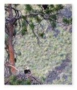 Watching The Nest Fleece Blanket