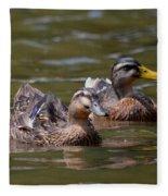 Water Buddies - Female Mallards Fleece Blanket