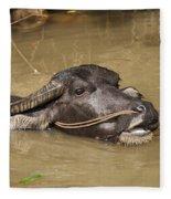 Water Buffalo Fleece Blanket