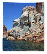 Water Canyon II Fleece Blanket