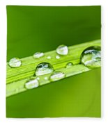 Water Drops On Grass Blade Fleece Blanket