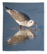Water Fountain Fleece Blanket