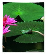 Water Lillies In Pink Fleece Blanket