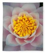Water Lillies Macro Fleece Blanket