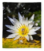Water Lily 1 Fleece Blanket