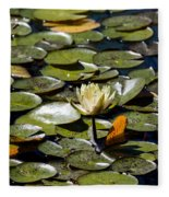 Water Lily And Bees Fleece Blanket