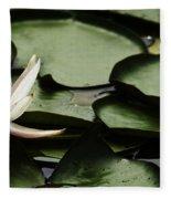 Water Lily Pad Fleece Blanket