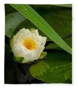 Water Lily Reflection Fleece Blanket