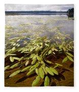 Water Plant Fleece Blanket
