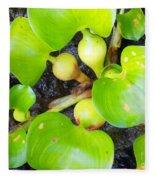Water Plants 1 Fleece Blanket