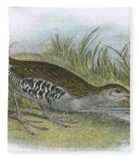 Water Rail Fleece Blanket