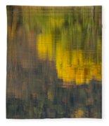 Water Reflections Abstract Autumn 2 B Fleece Blanket