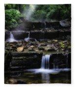 Water Steps In Fairmount Park Fleece Blanket