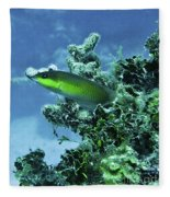 Water World Three Fleece Blanket