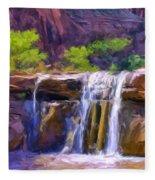 Waterfall At Coyote Creek Fleece Blanket