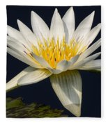 Waterlily And Pad Fleece Blanket