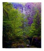 Watson Falls Fleece Blanket