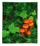 Wax Cap Fungi Fleece Blanket