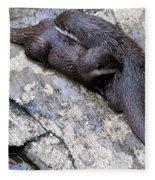 We Otter Snuggle Up Fleece Blanket