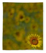 We Worship The Sun Fleece Blanket