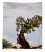 Weatherbeaten Juniper Fleece Blanket