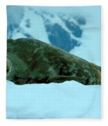 Weddell Seal Fleece Blanket