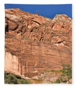 Weeping Rock In Zion National Park Fleece Blanket