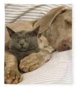 Weimaraner Asleep With Cat Fleece Blanket