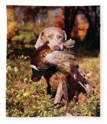 Weimaraner Hunting Dog Retrieving Ring Fleece Blanket