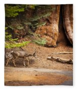 Welcome Home - Sequoia National Forest Fleece Blanket