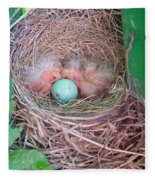 Welcome To The World - Hatching Baby Robin Fleece Blanket