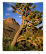 West Grand Canyon Fleece Blanket