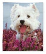 West Highland Terrier Dog In Heather Fleece Blanket