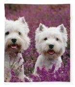 West Highland Terrier Dogs In Heather Fleece Blanket