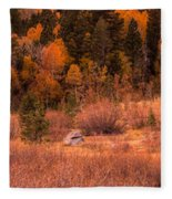 Western Barn At Sunset Iv Fleece Blanket
