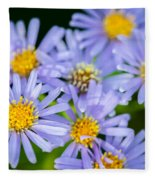 Western Daisies Asters Glacier National Park Fleece Blanket