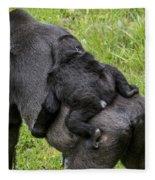 Western Lowland Gorilla 1 Fleece Blanket