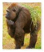 Western Lowland Gorilla Female Fleece Blanket