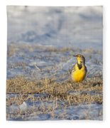 Western Meadowlark Fleece Blanket