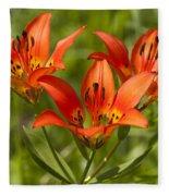 Western Wood Lily Fleece Blanket