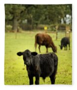 Wet Calf Fleece Blanket