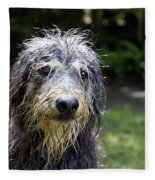 Wet Dog Fleece Blanket