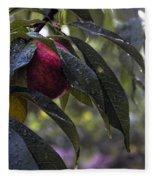 Wet Peach Fleece Blanket